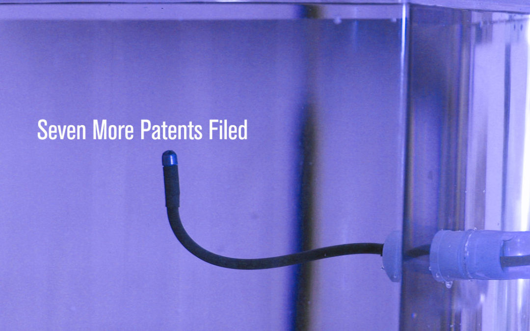 Seven More Patents Filed
